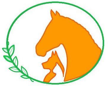 Logo Animo Naturopathie
